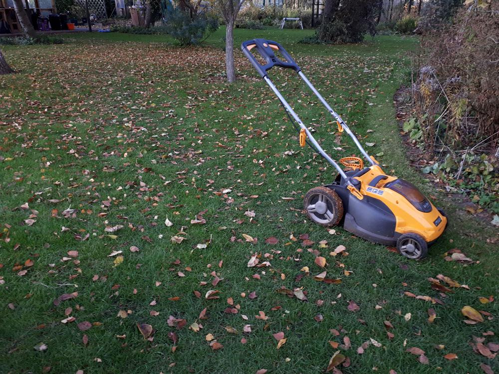 Mow off leaves