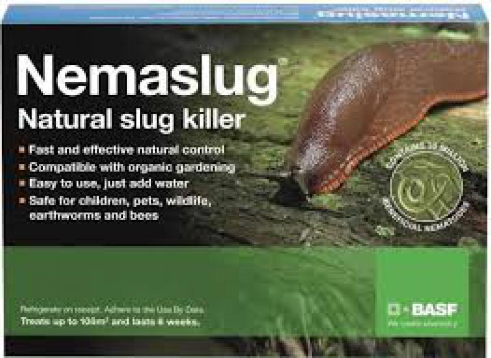 Use nematodes to control slugs underground